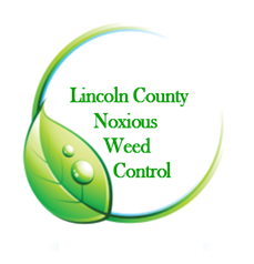 Lincoln.png#asset:4682