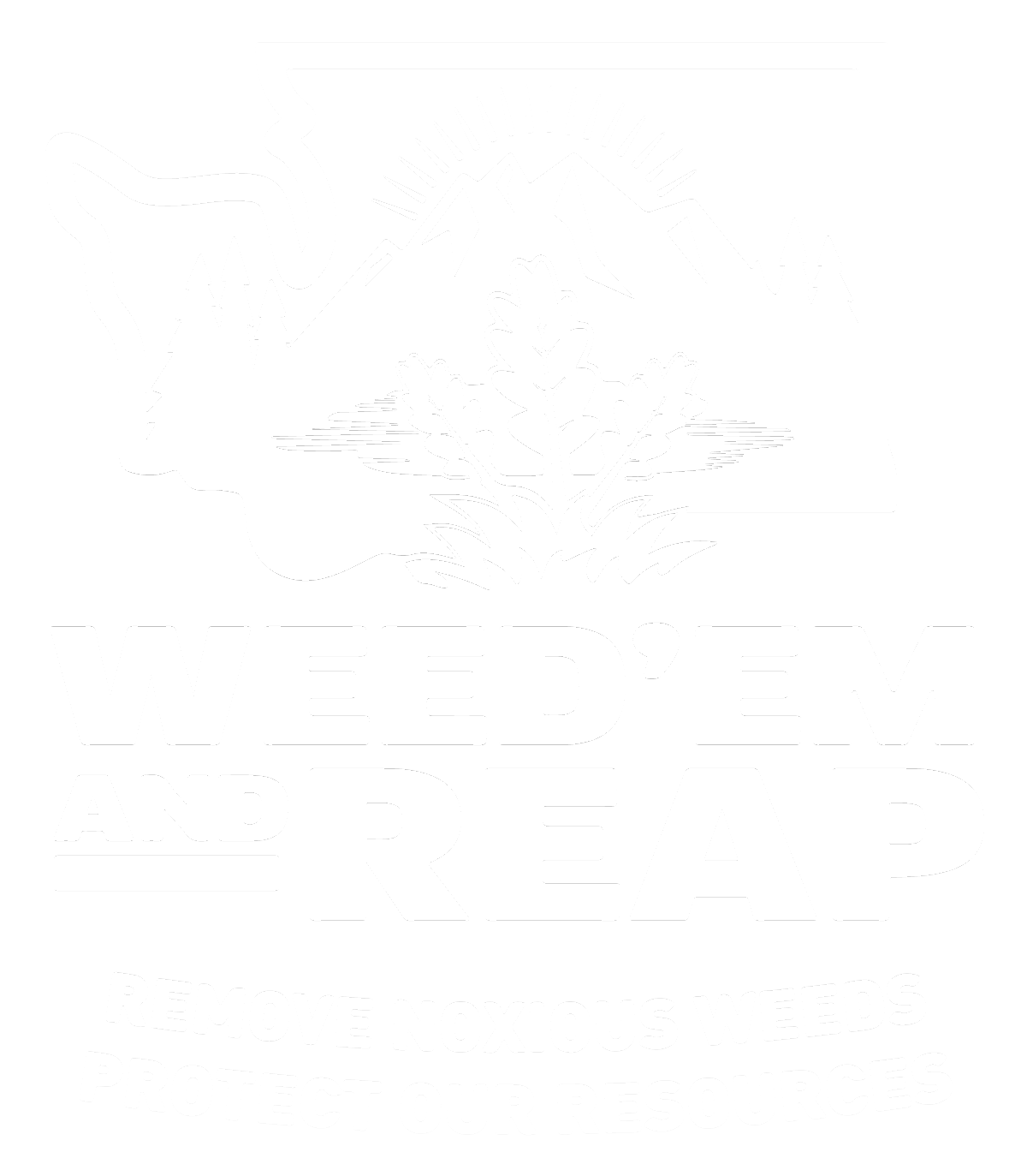 Noxious Weeds Damage Our Resources